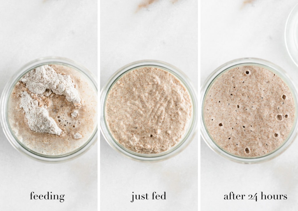 three photos showing steps to make a sourdough starter.