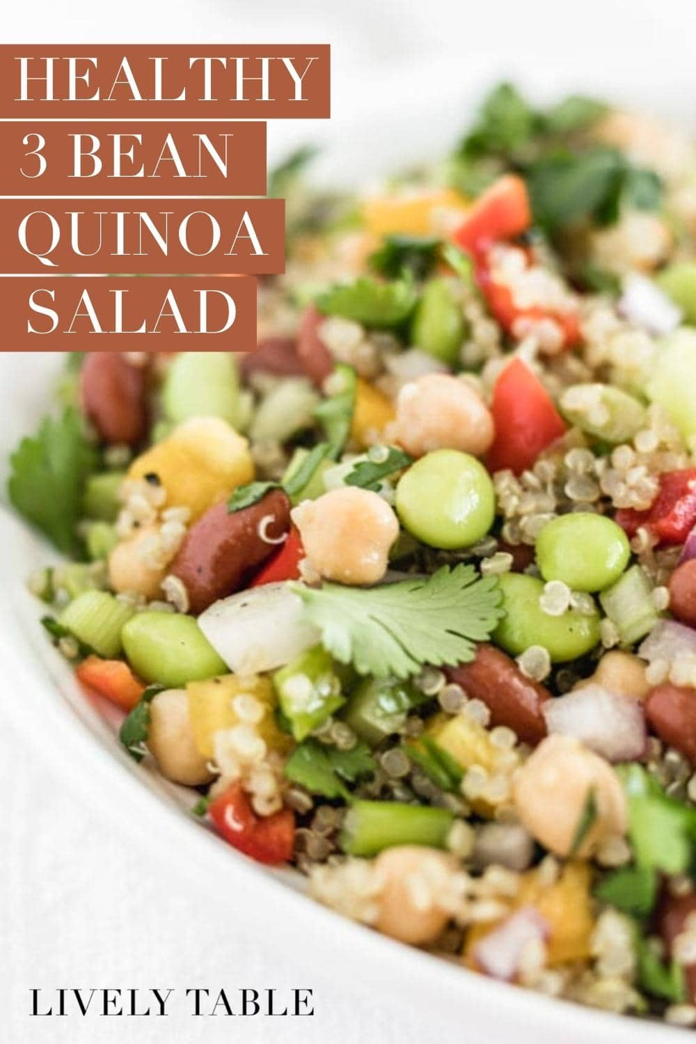 Get plenty of protein, fiber, and whole grains in a healthy and delicious 3 Bean Quinoa Salad! It's a great vegan and gluten free side for a summer barbecue or on it's own for a filling lunch. #vegan #glutenfree #vegetarian #beansalad #easy #simple #quinoasalad #summerrecipes #easylunch #easydinner