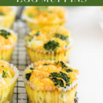 Easy Make-Ahead Broccoli Cheddar Egg Muffins are full of veggies and protein for a healthy breakfast on busy mornings. This recipe is perfect for weekend meal prep! #glutenfree #vegetarian #easybreakfast ##makeahead #simplerecipes #onthego #broccolicheddarrecipes