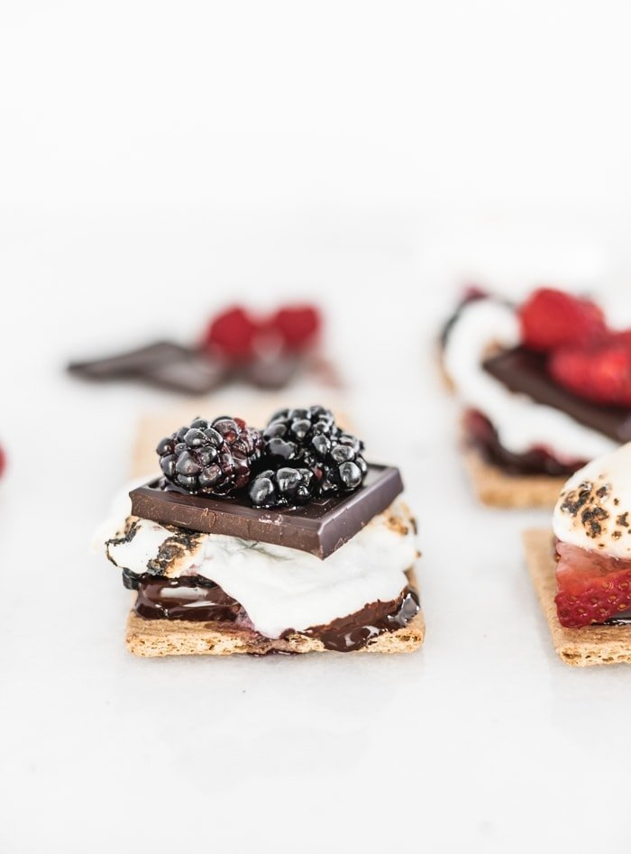 graham cracker topped with melted dark chocolate, gooey toasted marshmallow, more chocolate and smashed blackberries surrounded by more s'mores