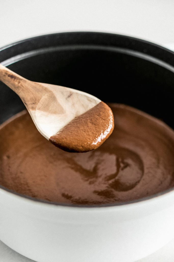 closeup of mole negro on a wooden spoon.