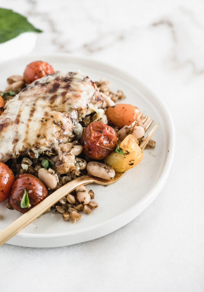 mozzarella topped chicken breast on top of farro and roasted tomatoes on a white plate with a gold fork.